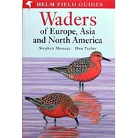 Waders of Europe, Asia and North America (Message & Taylor)
