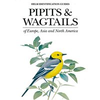 Pipits & Wagtails of Europe, Asia and North America (Alström