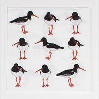 Napkin with Oystercatchers