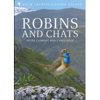Robins and chats (Clement & Rose)