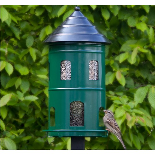 Seed Feeder - Giant Green