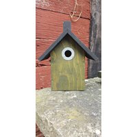 Nestbox Iris for small birds (Green)